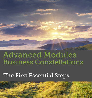 Advanced Modules Facilitating Business Constellations - First Steps