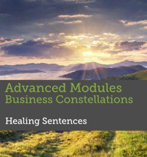 Advanced Modules Facilitating Business Constellations - Healing sentences