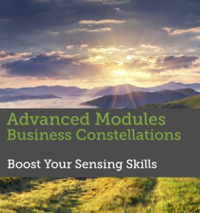 Advanced Modules Facilitating Business Constellations - Boost your sensing skills