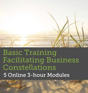 Basic Training Facilitating Business Constellations