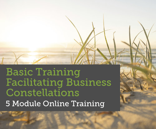 Basic Training Facilitating Business Constellations