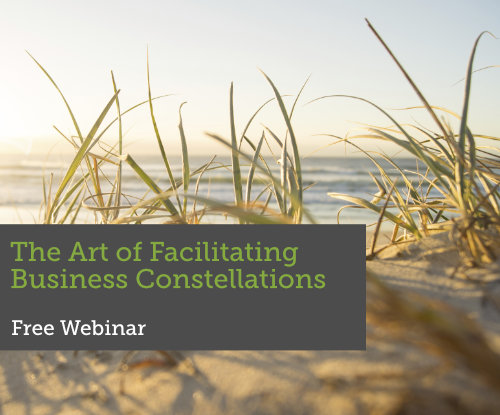 The art of facilitating business constellations