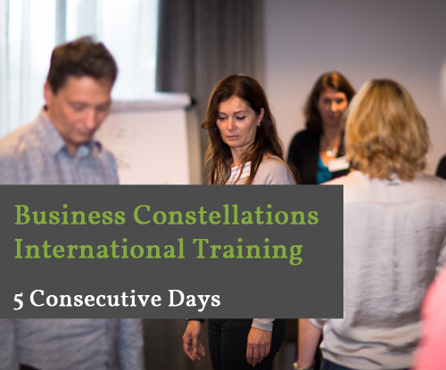 Training-Business-Constellations