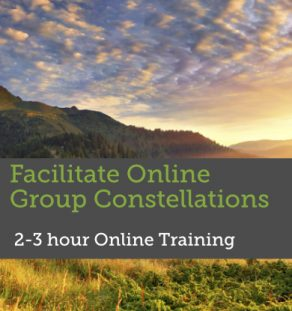 Training Online Group Constellations