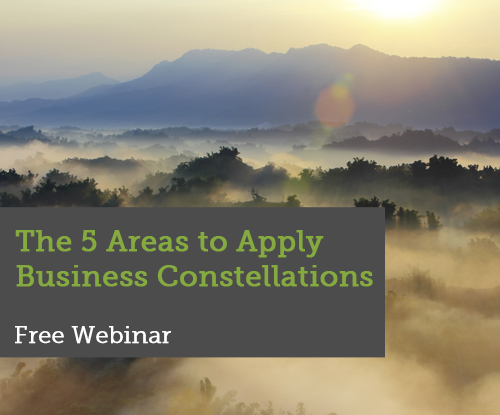 Webinar-5-Areas-to-Apply-Business-Constellations