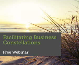 Webinar Facilitating Business Constellations
