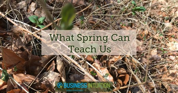 What-spring-can-teach-us